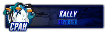 Kally Reporter Signature